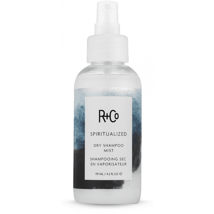 r and co castor oil hair products mane addicts